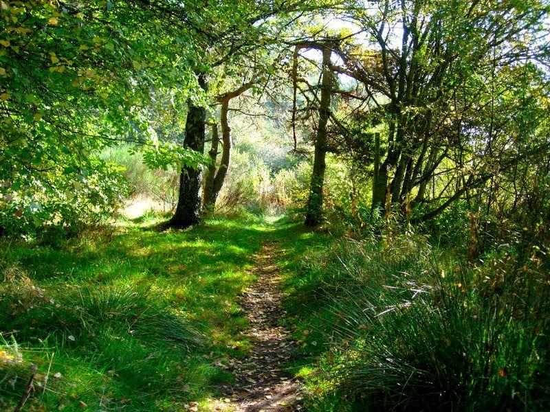Sentier nature lozère